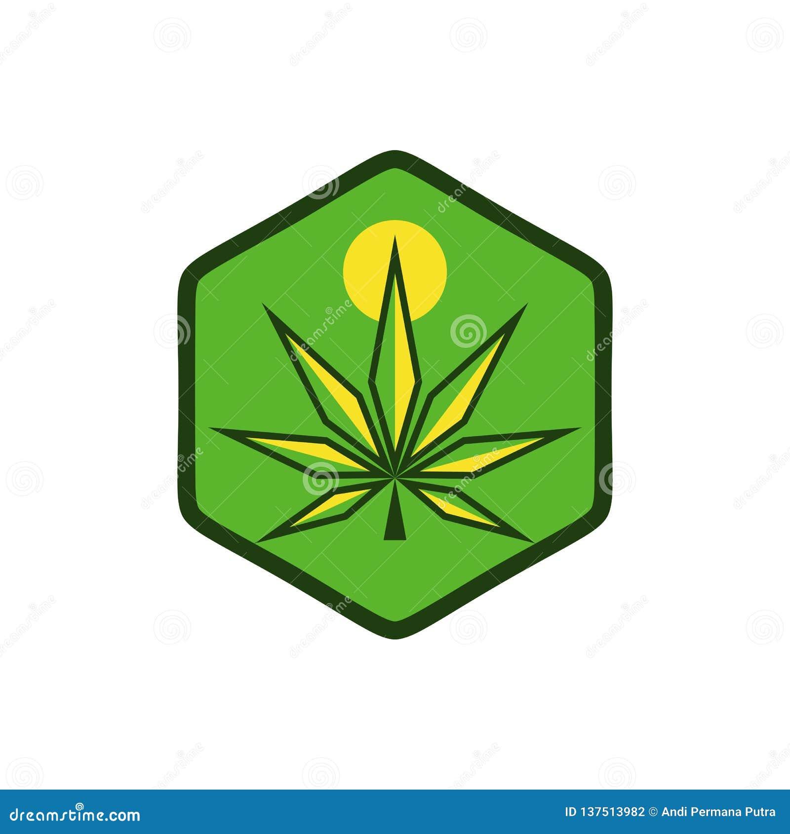 Os cannabis expõem ao sol o projeto moderno do vetor do logotipo