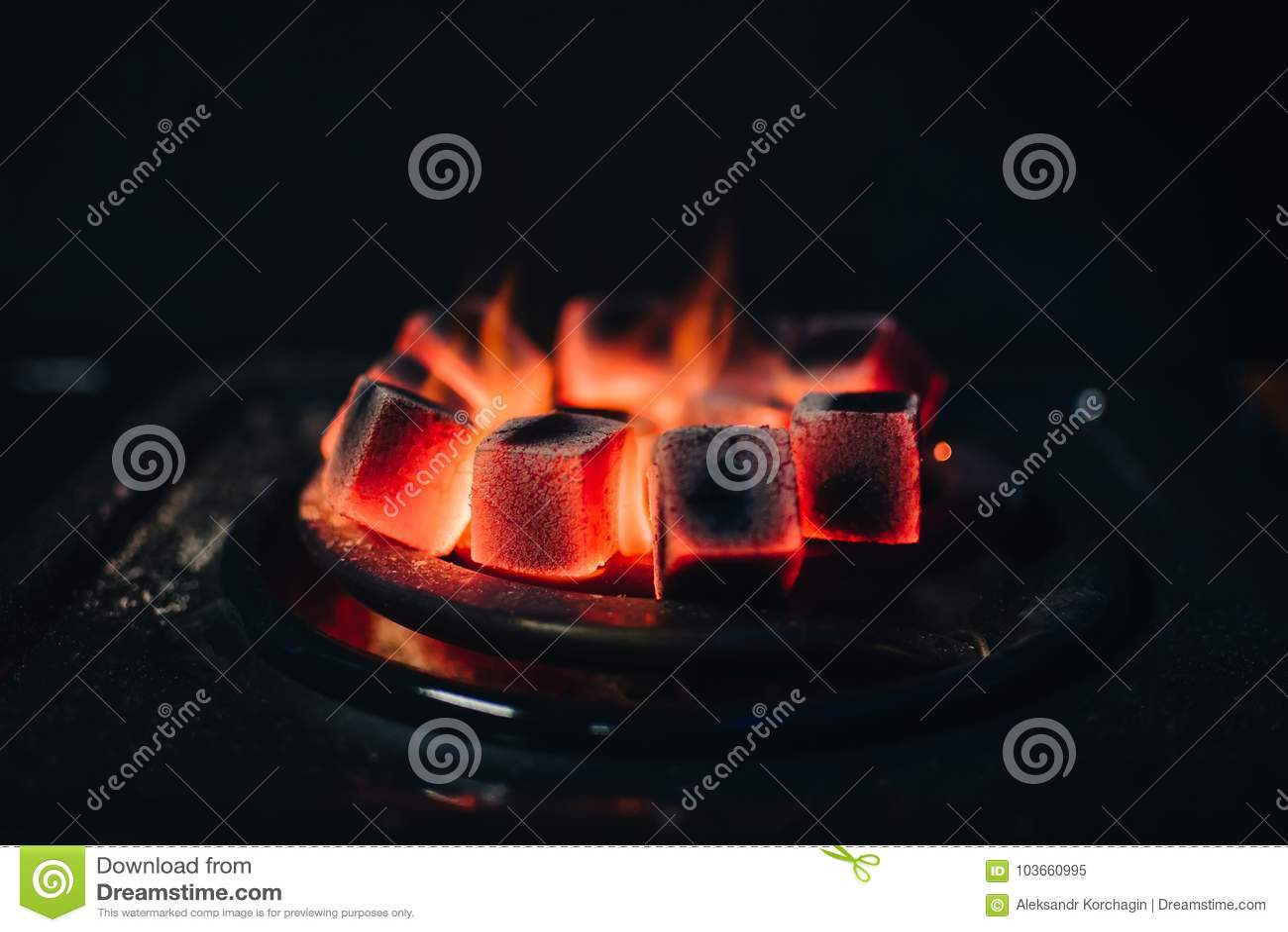 Os carvões quentes para Shisha aqueceram-se no fogão em uma barra do cachimbo de água