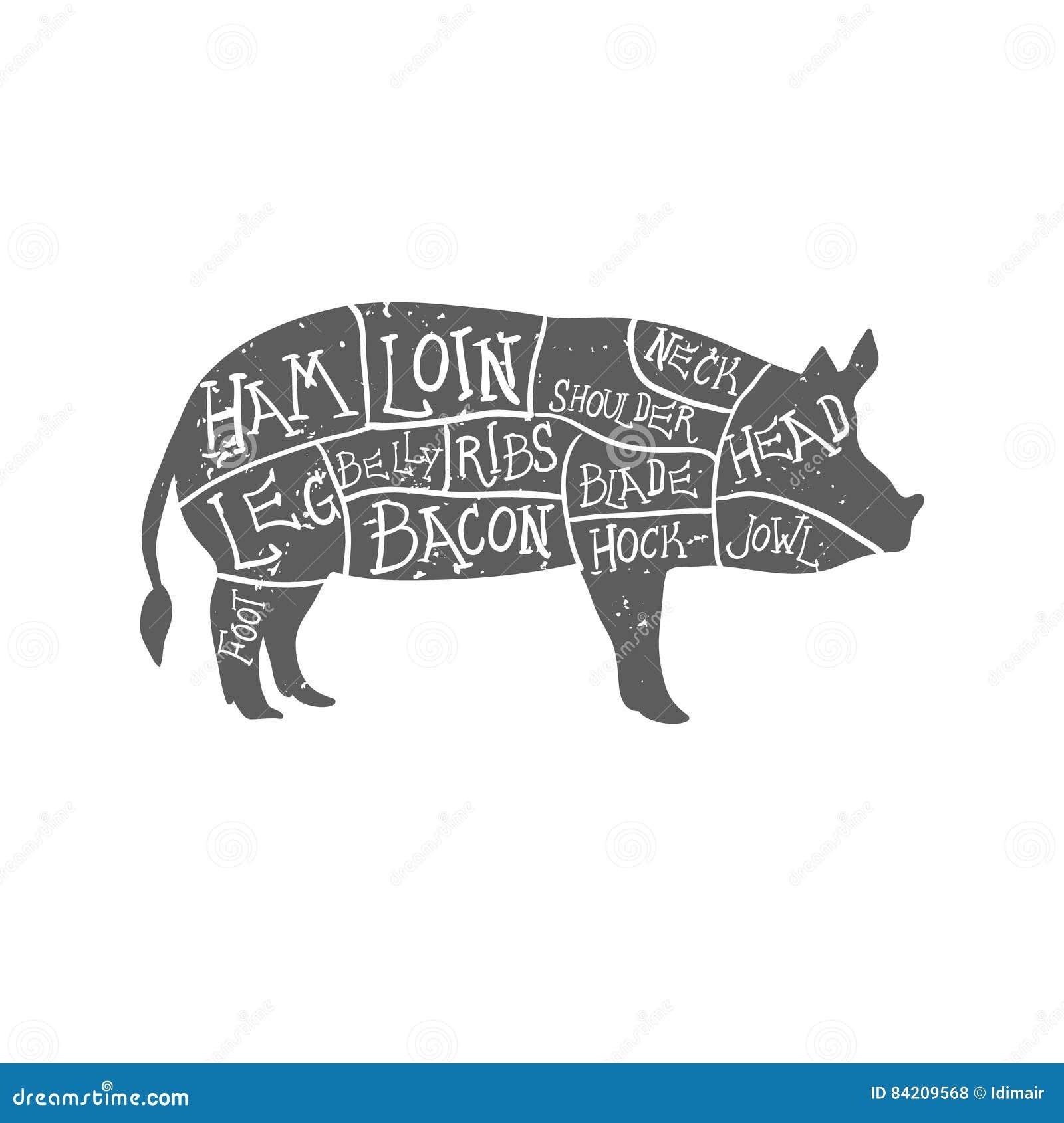 Os cortes de carne de porco americanos, carniceiro desenhado à mão tipográfico do vintage cortam o esquema grunge na camada separ