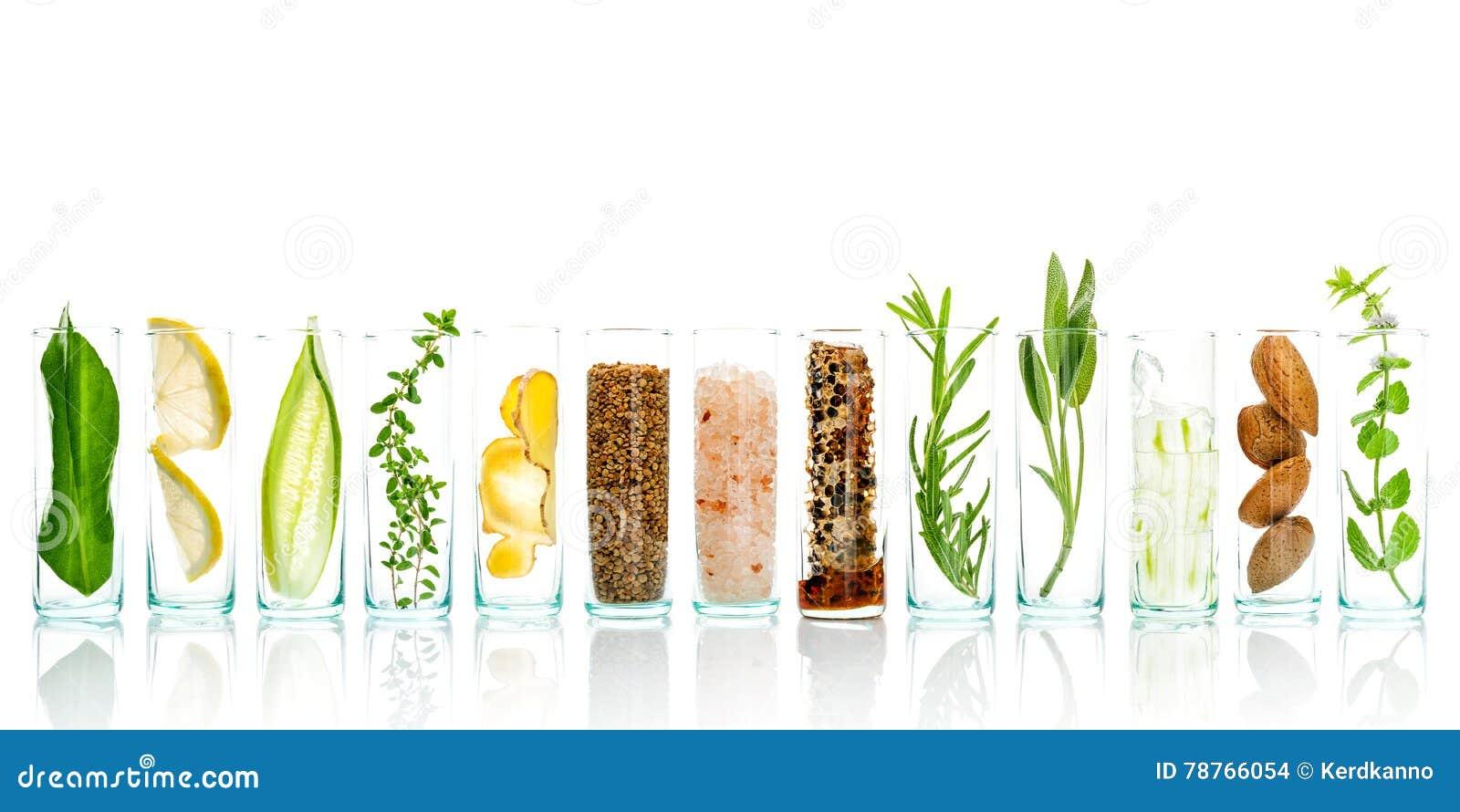 Os cuidados com a pele caseiros e o corpo esfregam com aloés natural dos ingredientes