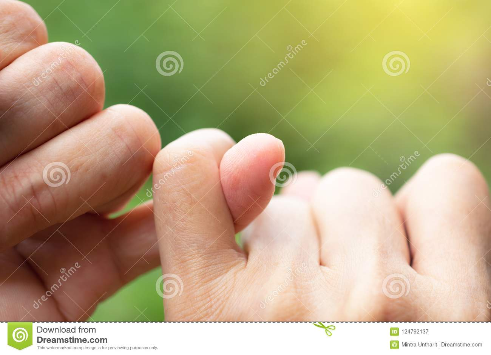 Os dedos mindinhos dos amigos na promessa do fundo da natureza são importa