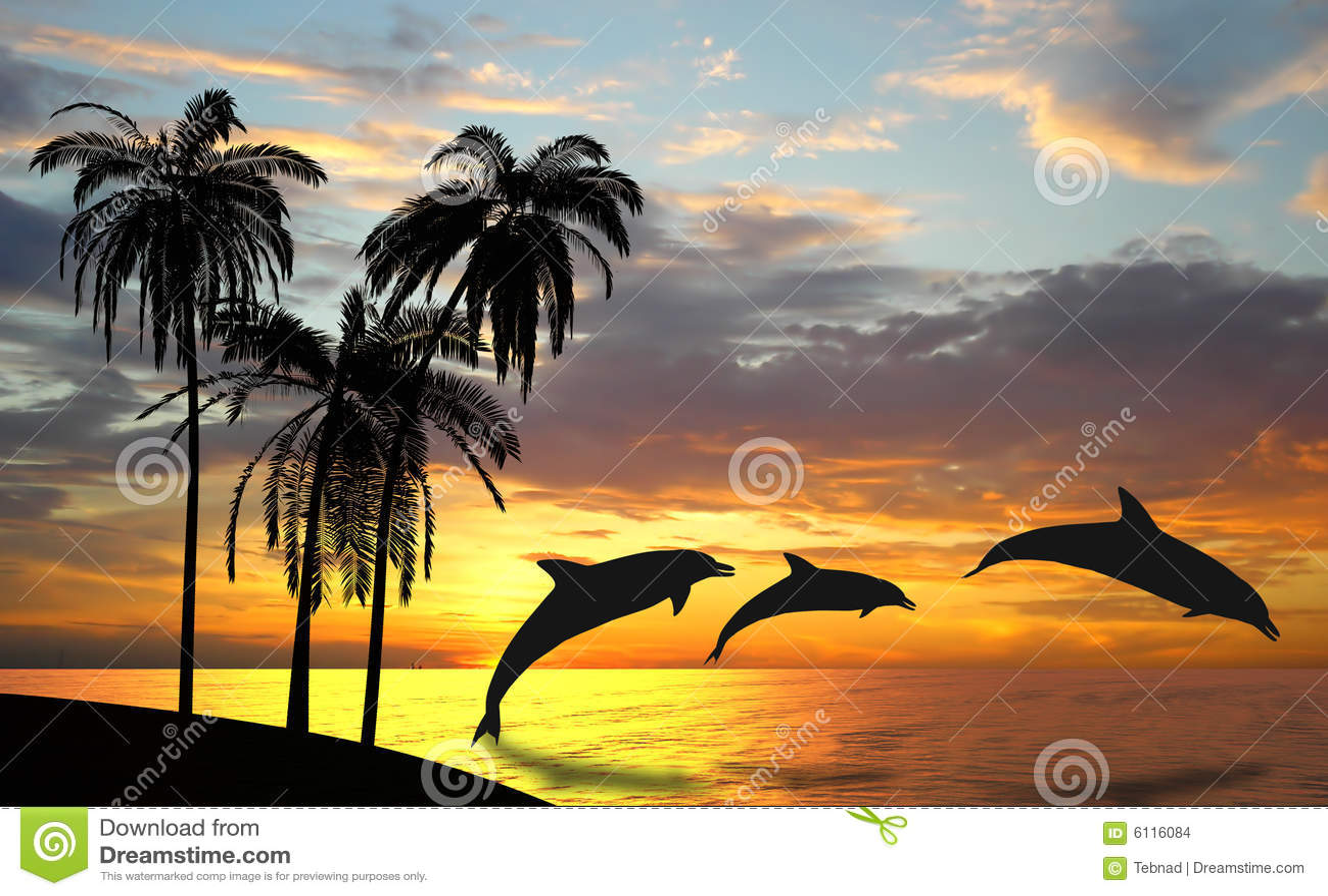Os golfinhos aproximam Havaí