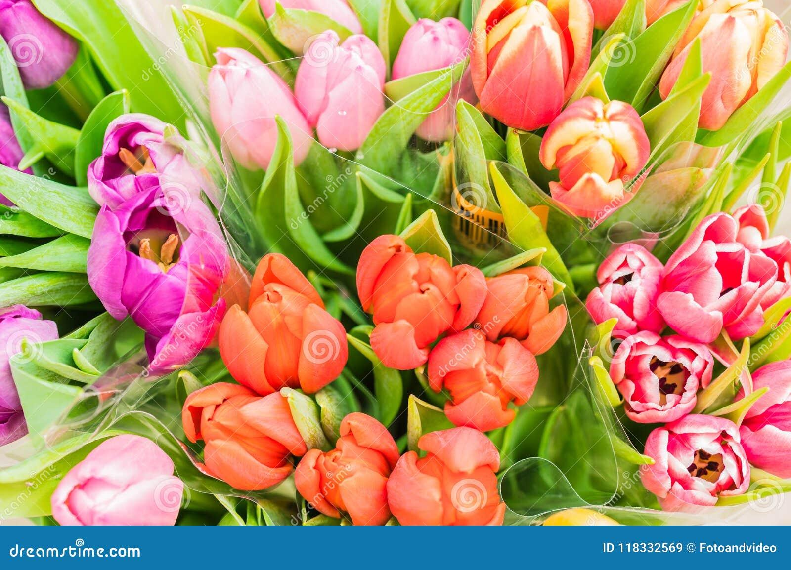 Os grupos da mola colorido das tulipas florescem, vista superior