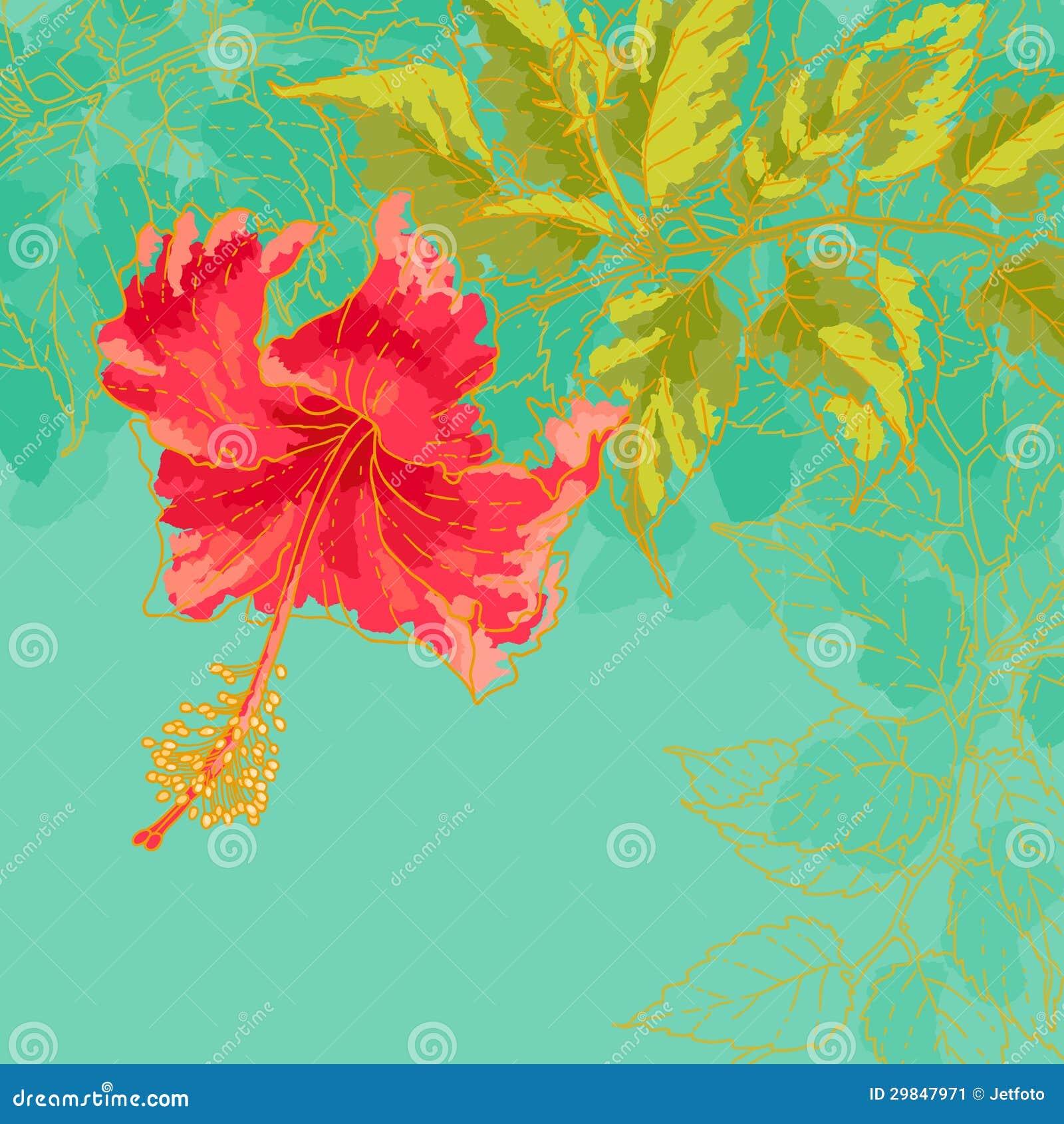 Flor do hibiscus no fundo tonificado