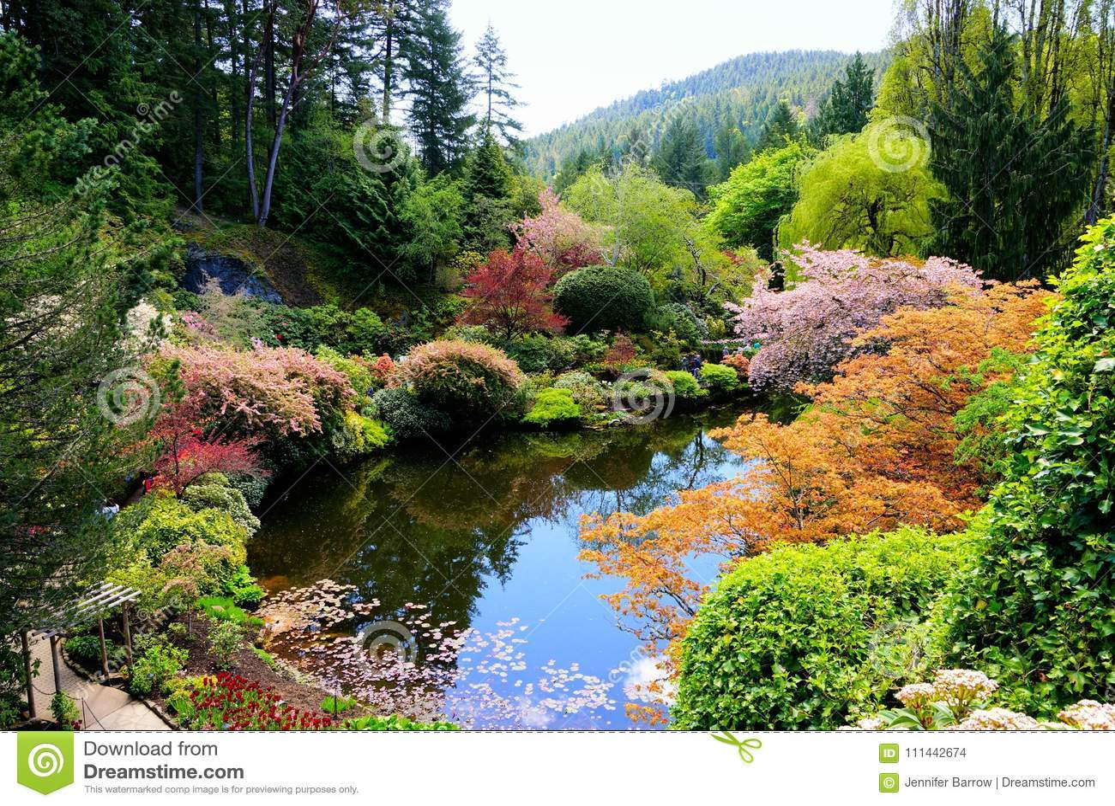 Os jardins de Butchart, Victoria, Canadá, lagoa com mola vibrante florescem