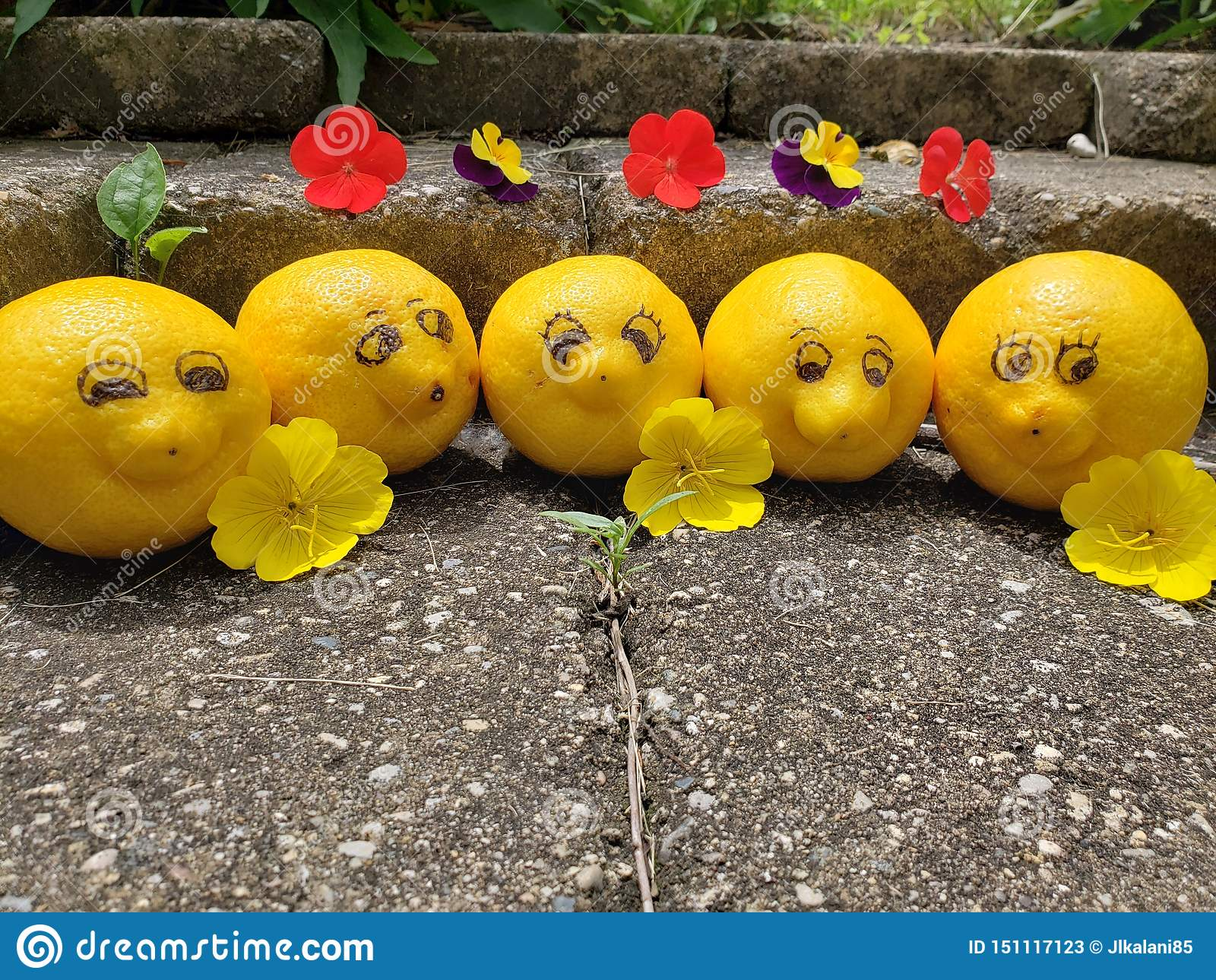 Os limões felizes sorrirem para a câmera quando em umas férias ensolaradas