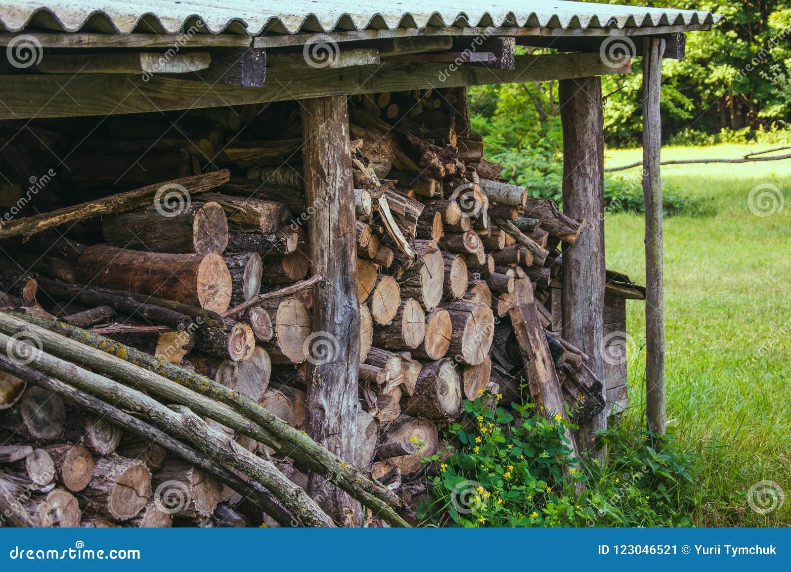 Os logs da lenha dobraram-se sob o telhado na grama verde no verão
