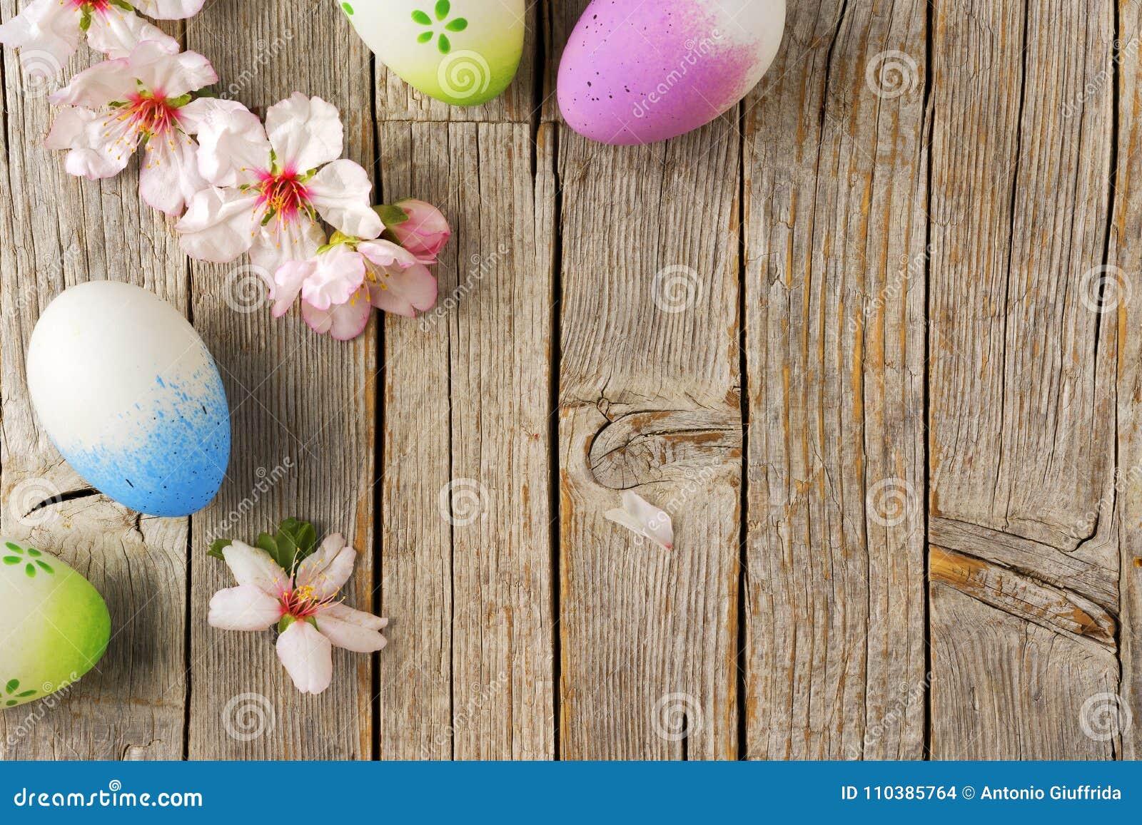 Os ovos da páscoa e a amêndoa florescem na tabela de madeira velha