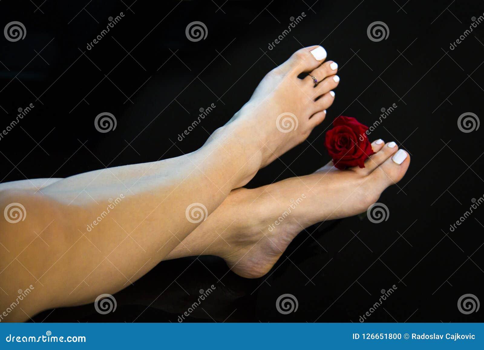 Os pés agradáveis da mulher cruzaram-se com a flor fresca da rosa do vermelho, polimento de pregos branco, pele lisa e saltos, pé