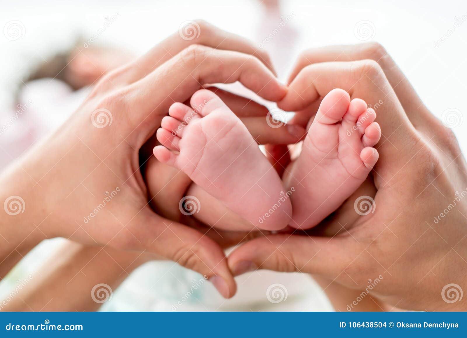 Os pés recém-nascidos do bebê nas mãos da mamã e do paizinho, forma gostam de um coração bonito Conceito de família feliz