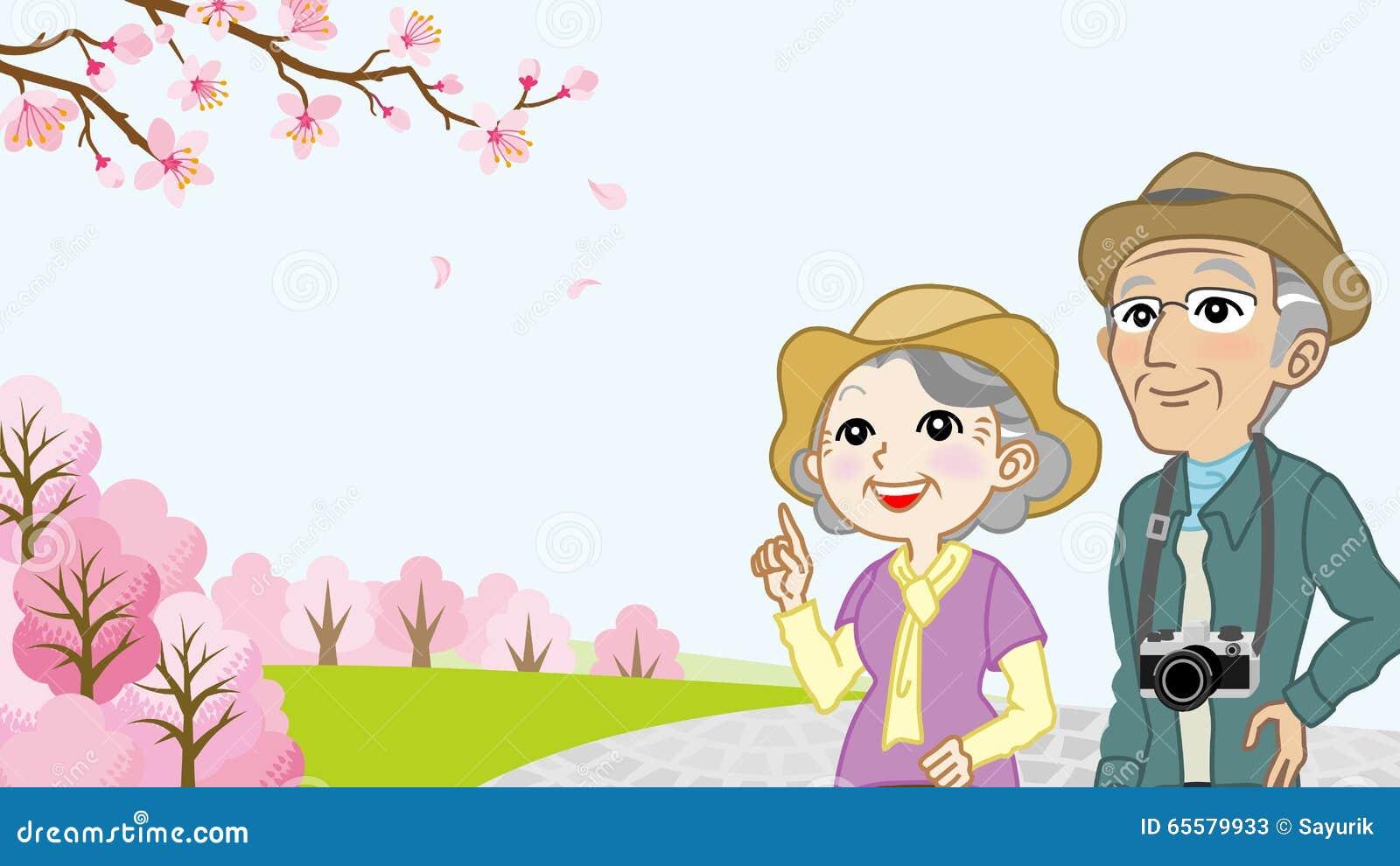 Os pares superiores apreciam a opinião das flores de cerejeira