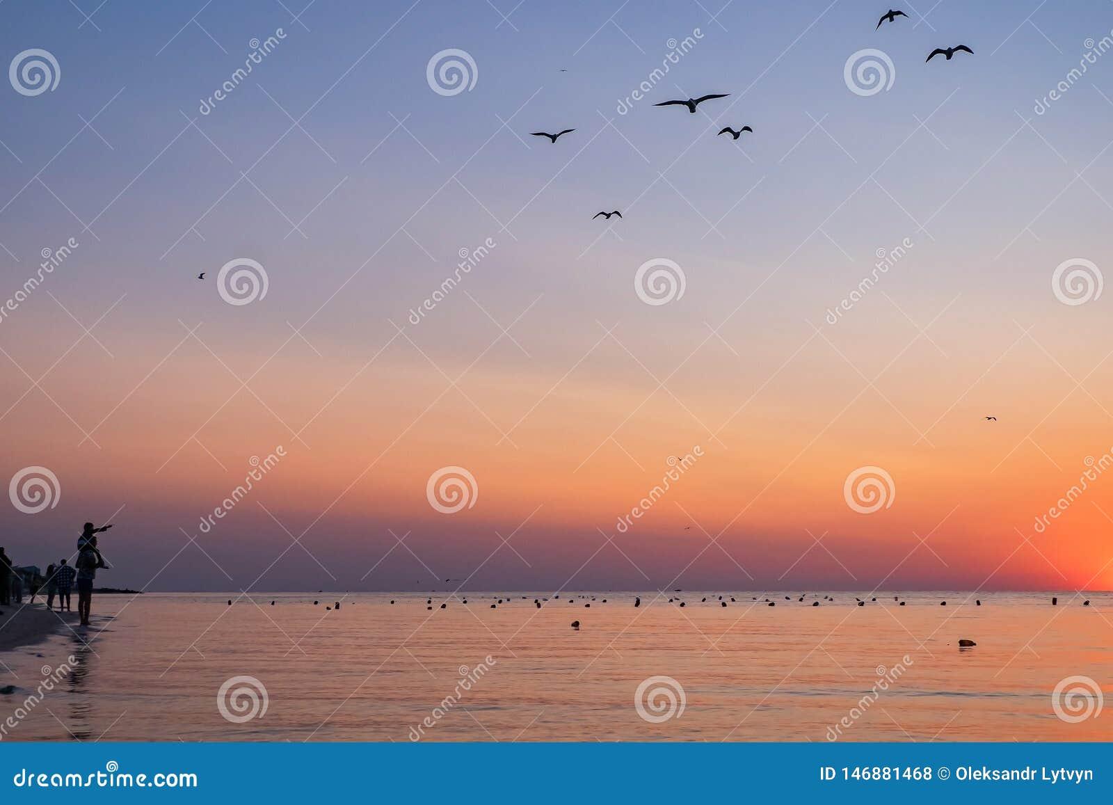 Os povos encontram o nascer do sol colorido na praia ao mar silhuetas dos povos e das gaivotas o pai guarda uma criança no seu