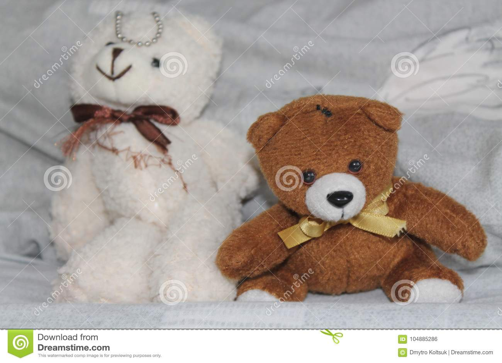 Os ursos brancos e pretos brincam o assento na cama