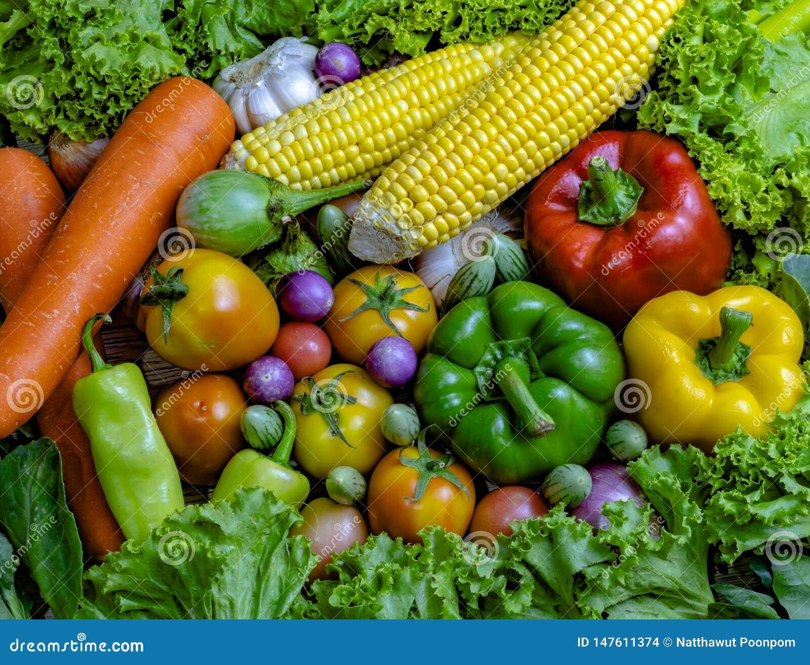 Os vegetais s?o bons para a sa?de