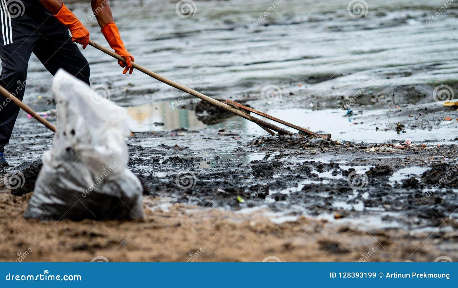 Os voluntários vestem luvas de borracha alaranjadas para recolher o lixo Poluição do ambiente da praia Voluntários que limpam a p