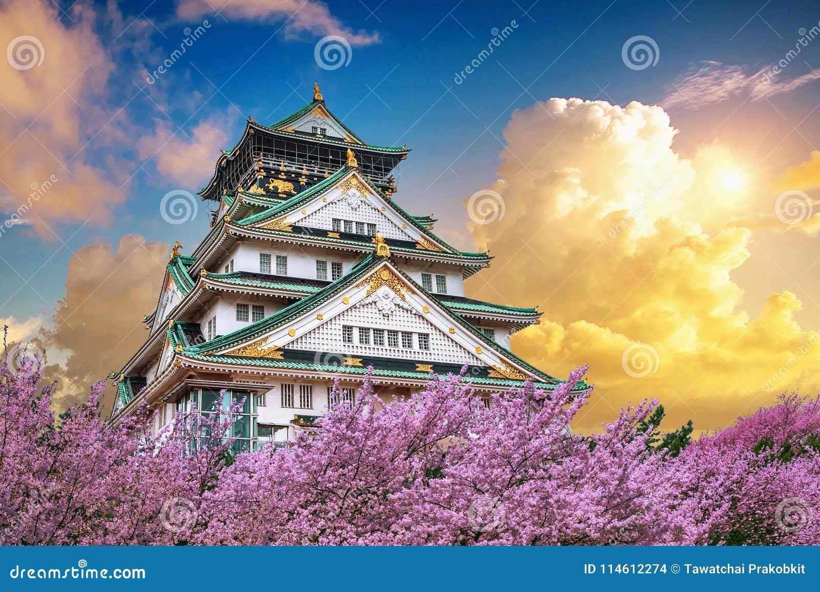 Osaka Castle e flor de cerejeira no por do sol na mola Estações de Sakura em Osaka, Japão