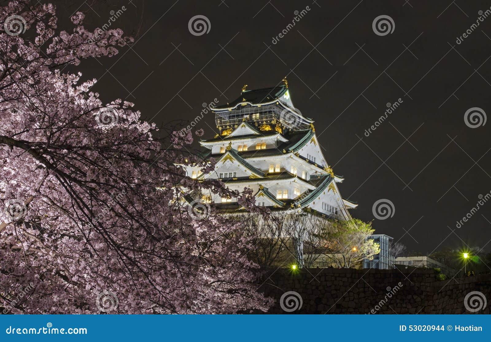 Osaka Castle Night View