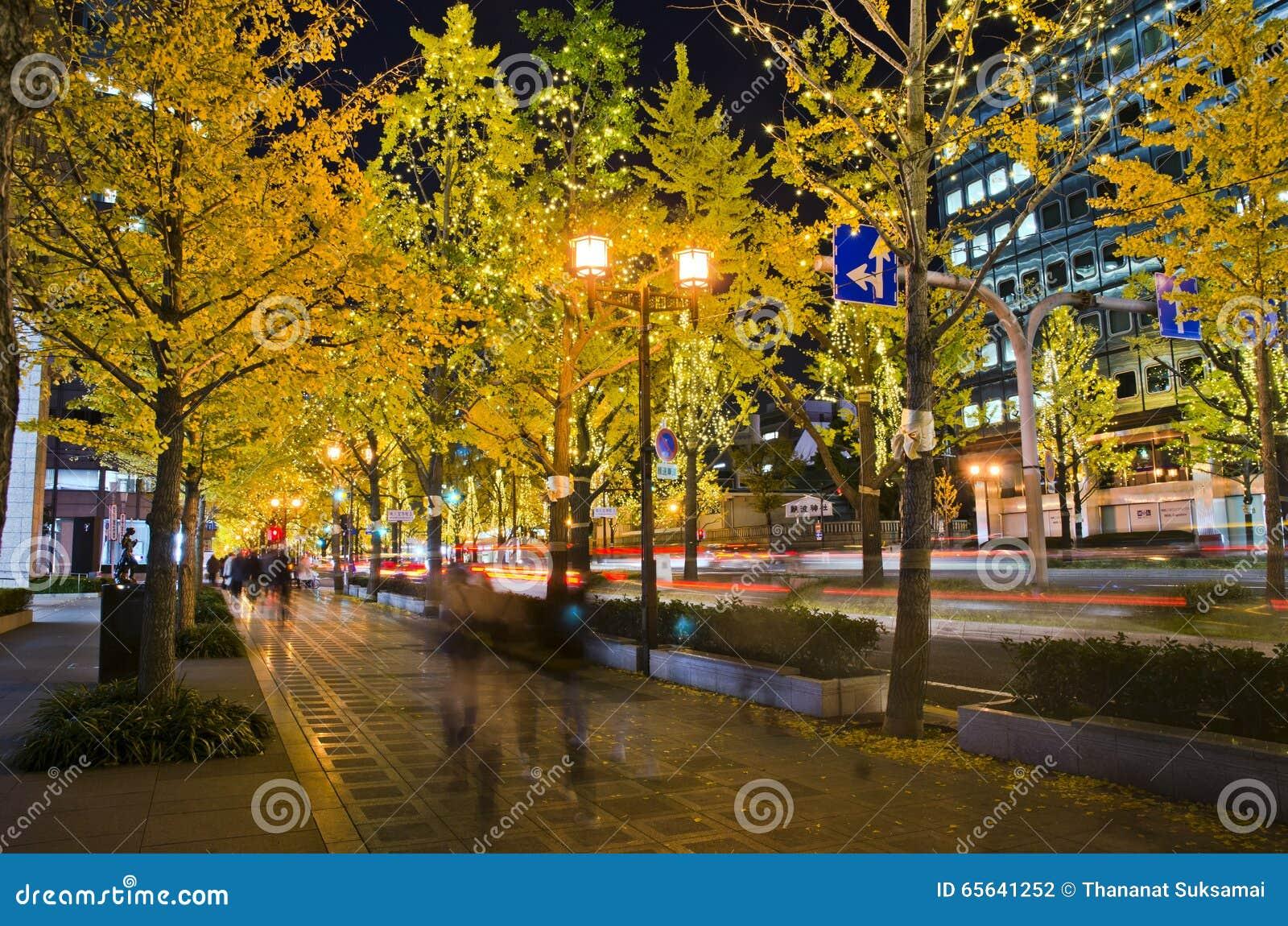 OSAKA, JAPON - 9 DÉCEMBRE 2015 : Un arbre de ginkgo dans la rue de Midosuji d Osaka, Japon