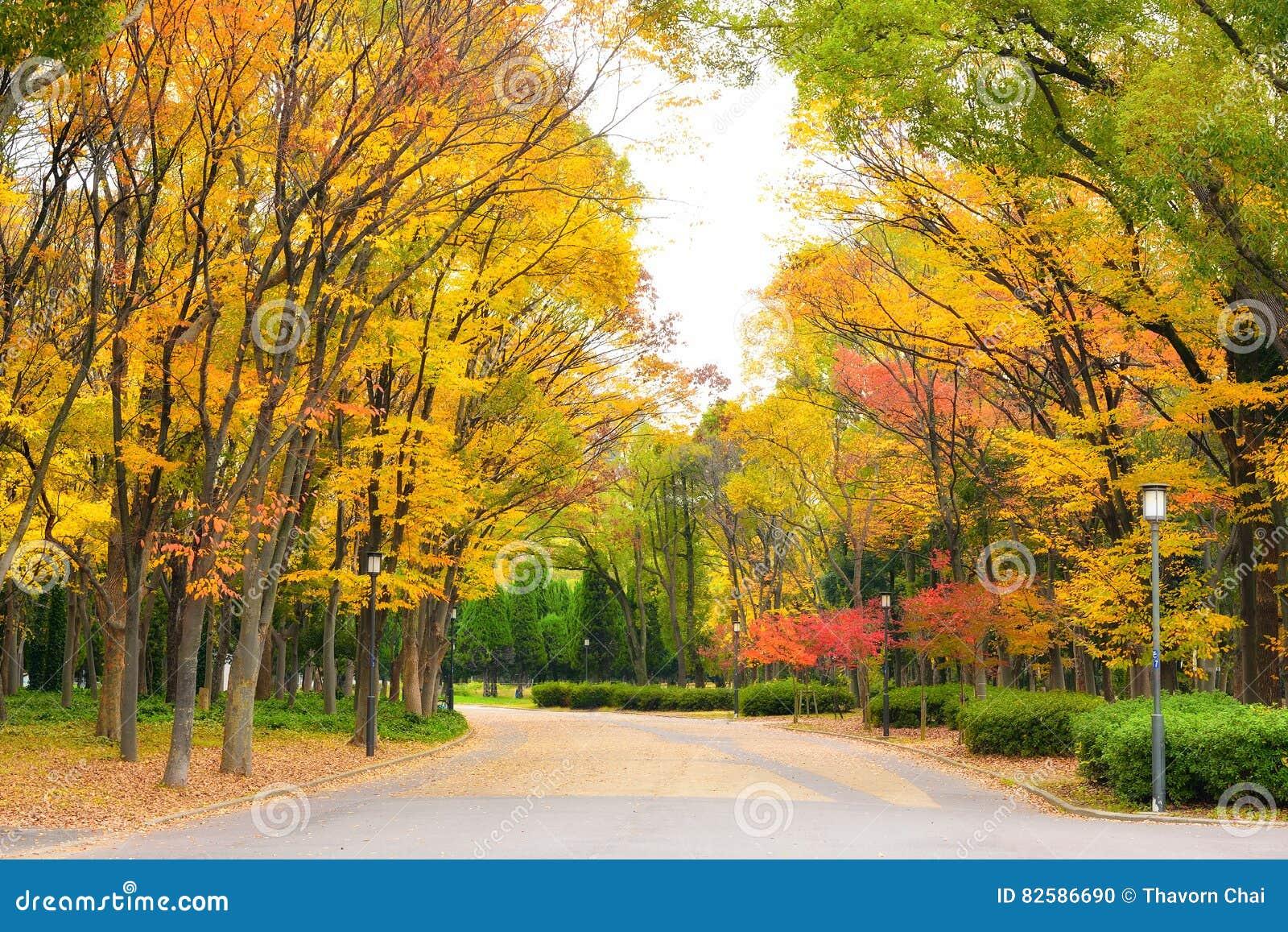 Osaka Park am Herbst