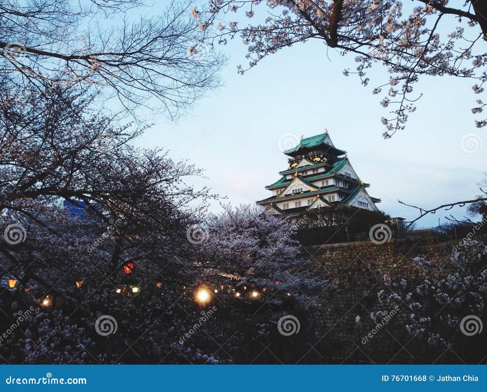 Osaka slott