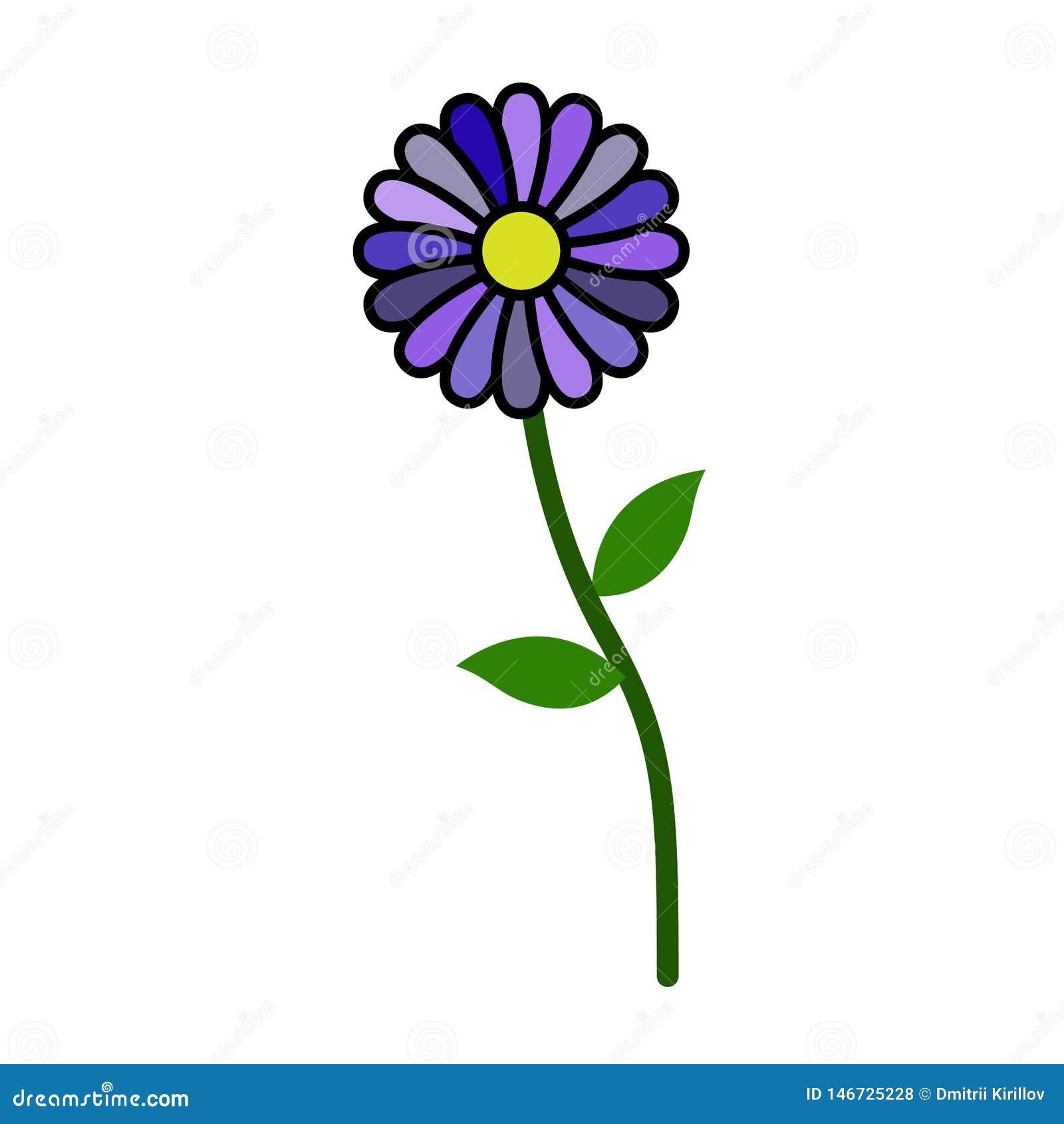 Osamotniony pozycja kwiat bez uderzenia odizolowywającego na białym tle Nowy, 2019