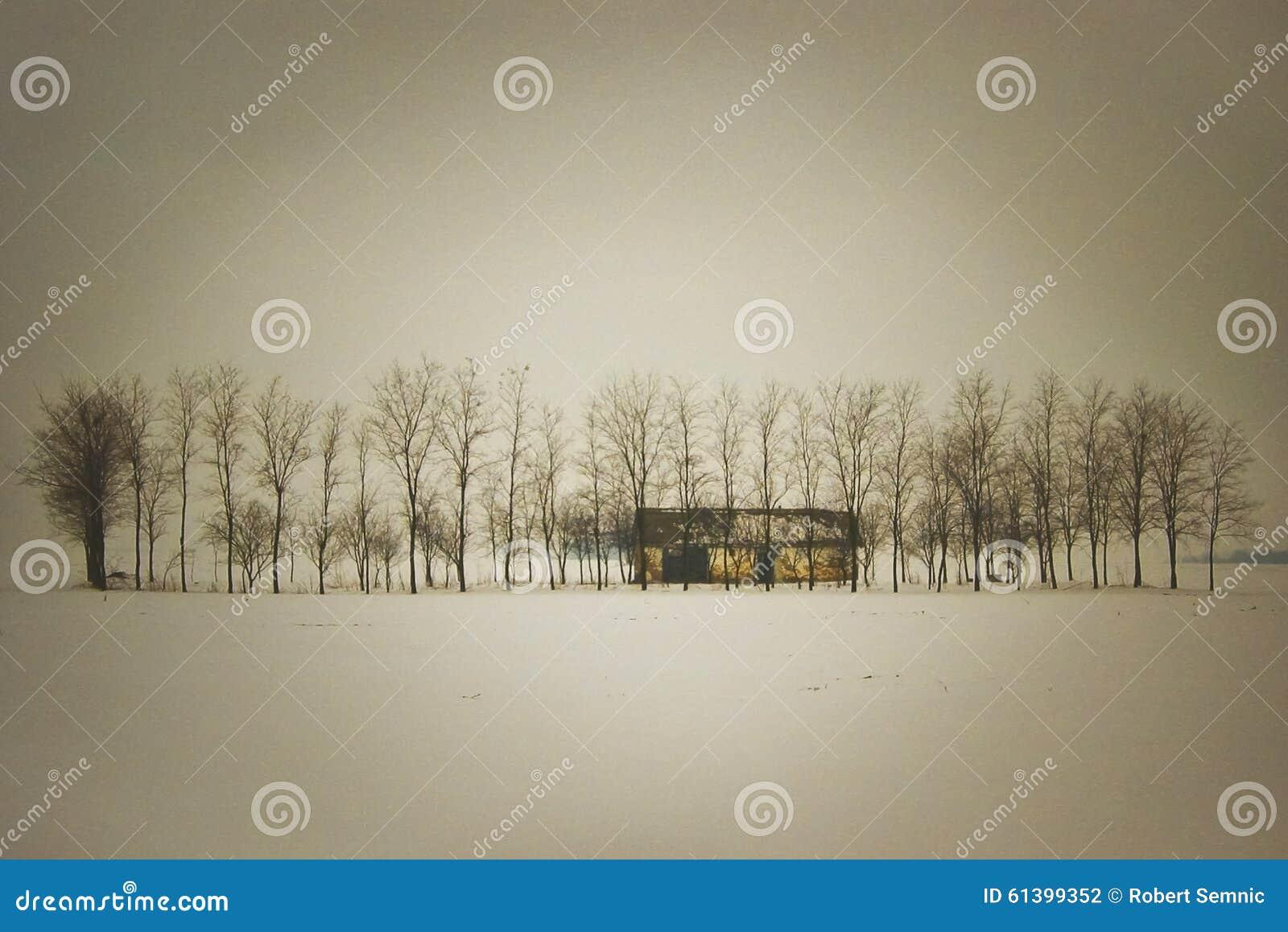 Osamotniony rancho