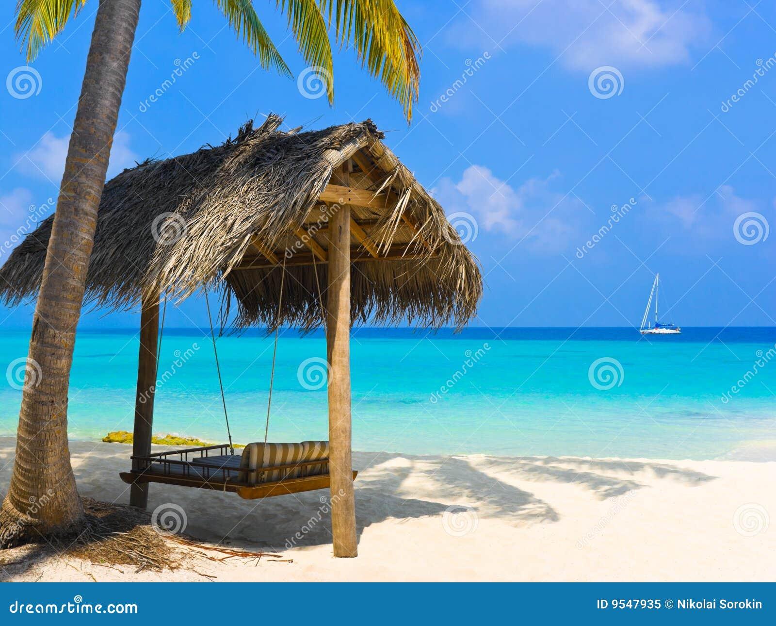 Oscillation de plage tropicale