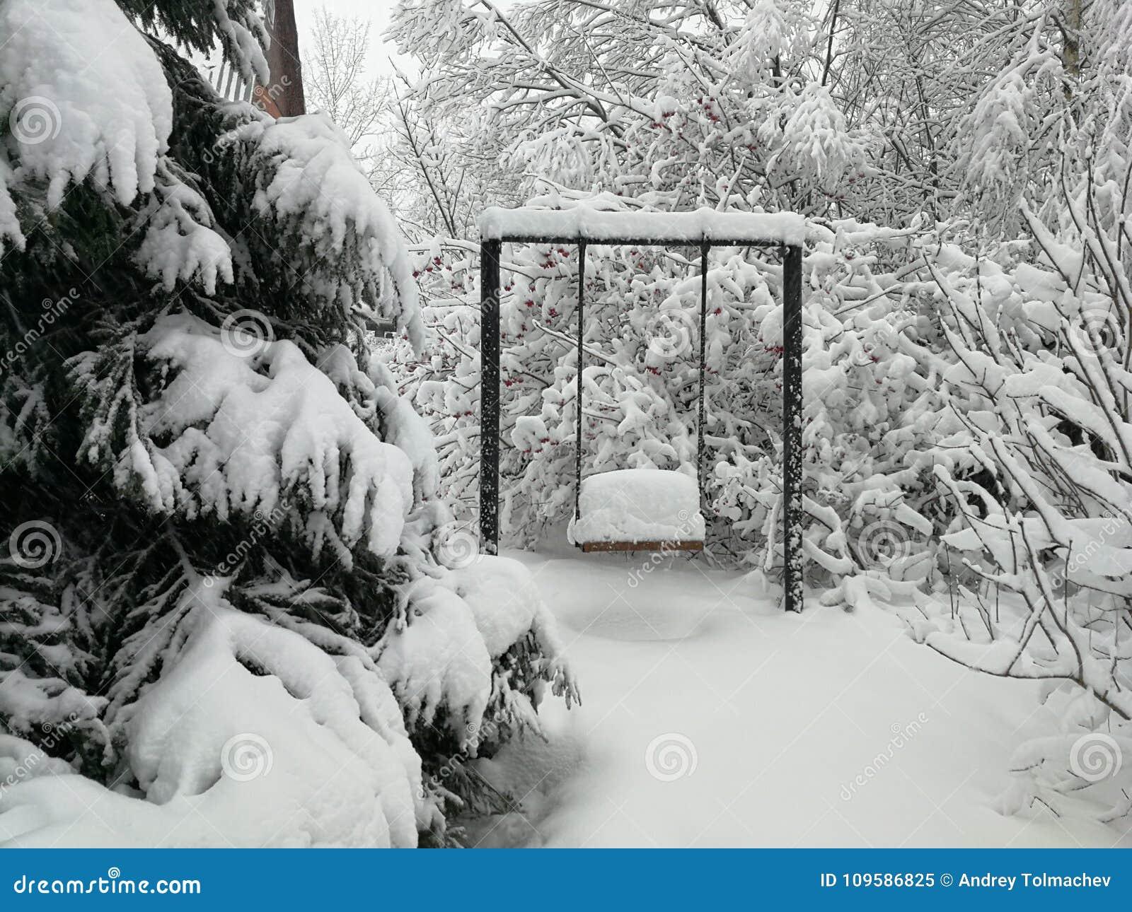 Oscillazioni beried sotto neve