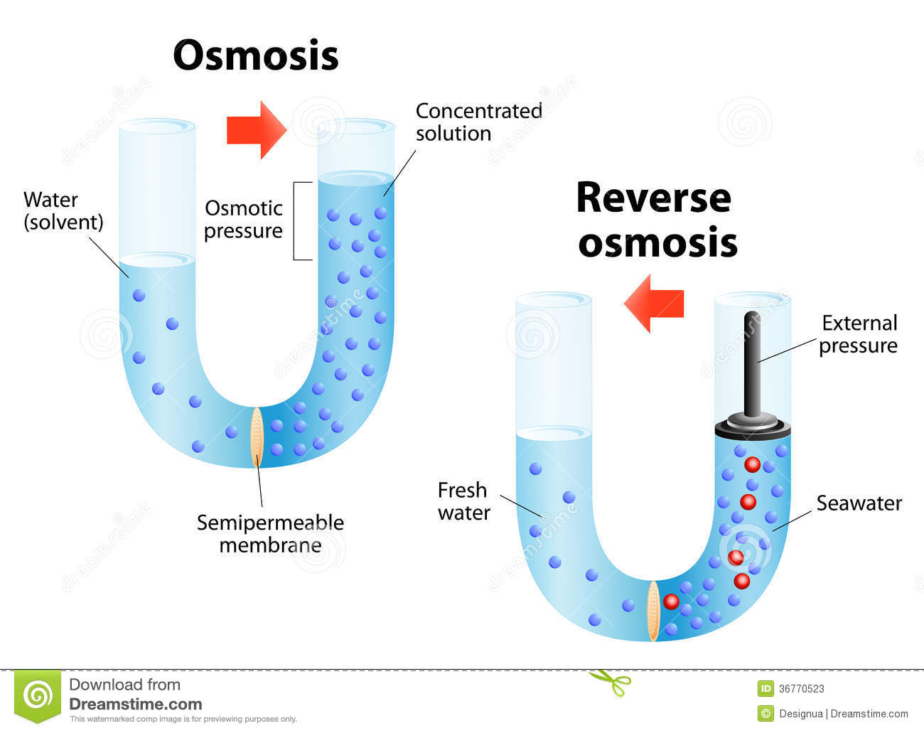 Osmosis And ... Reverse Osmosis Solved Example
