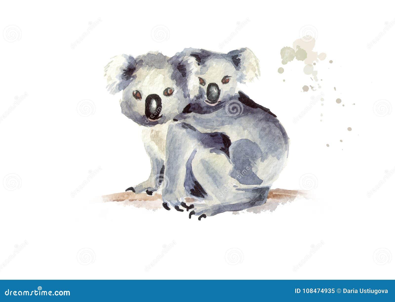 Oso de koala con el bebé que se sienta en una rama de árbol, aislada en el fondo blanco Ejemplo dibujado mano de la acuarela