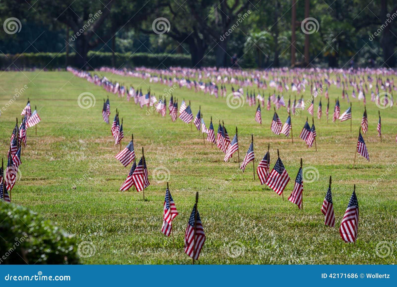 Oss flaggor i en veterankyrkogård på veterandag