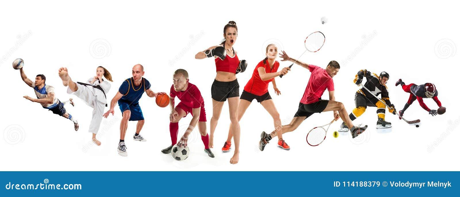 Ostente a colagem sobre kickboxing, futebol, futebol americano, basquetebol, hóquei em gelo, badminton, taekwondo, tênis, rugby