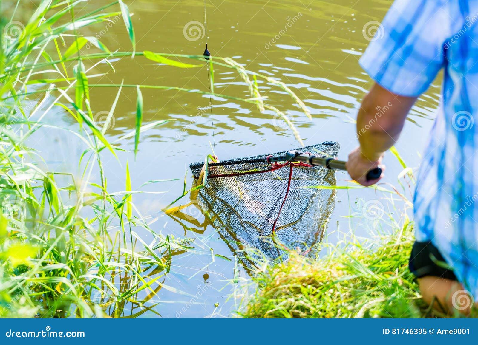 Ostente o pescador que obtém sua captura fora da água com mergulho