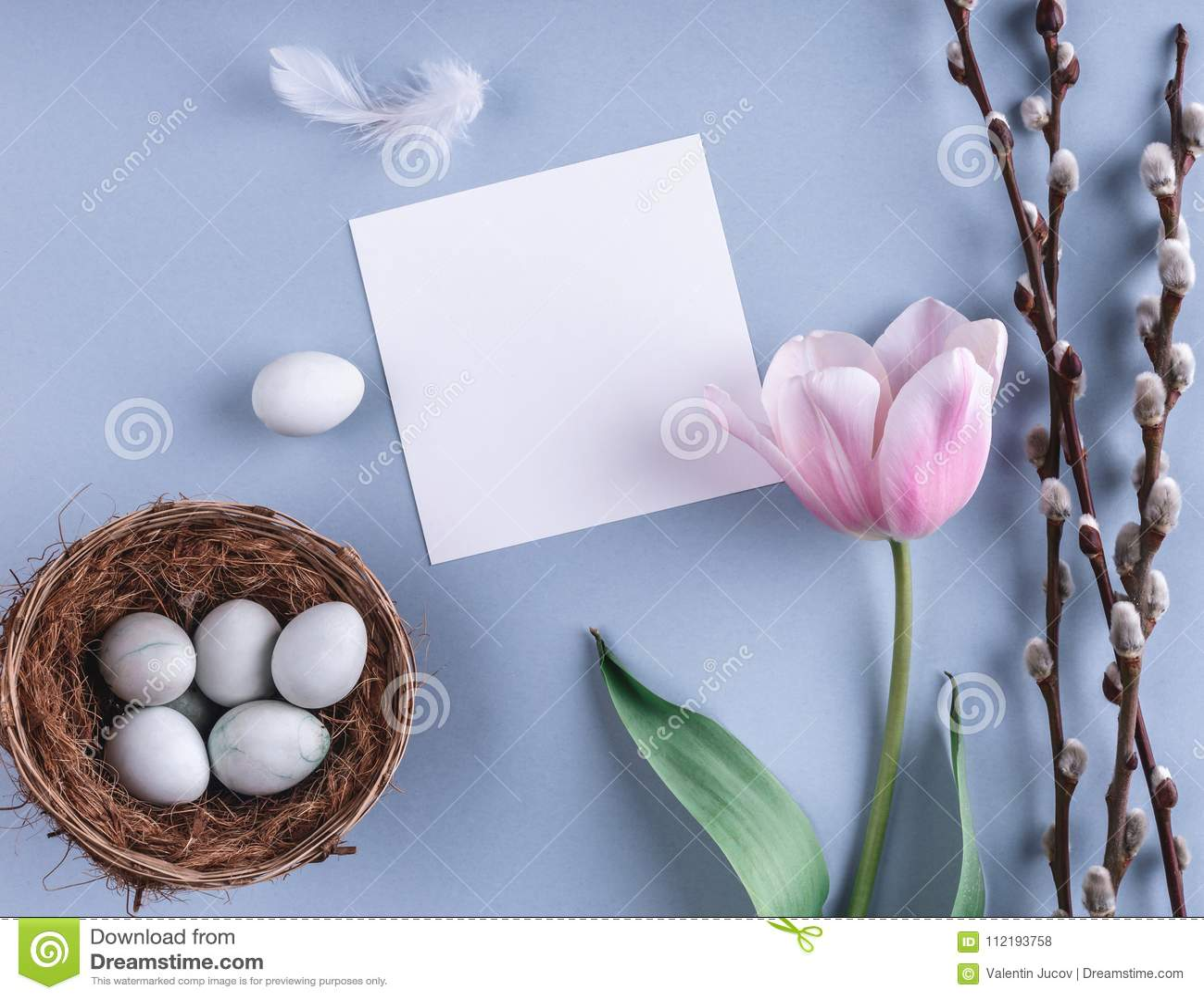 Ostereier in den Nest- und Tulpenblumen auf Frühlingshintergrund Draufsicht mit Kopienraum Glückliche Ostern-Karte