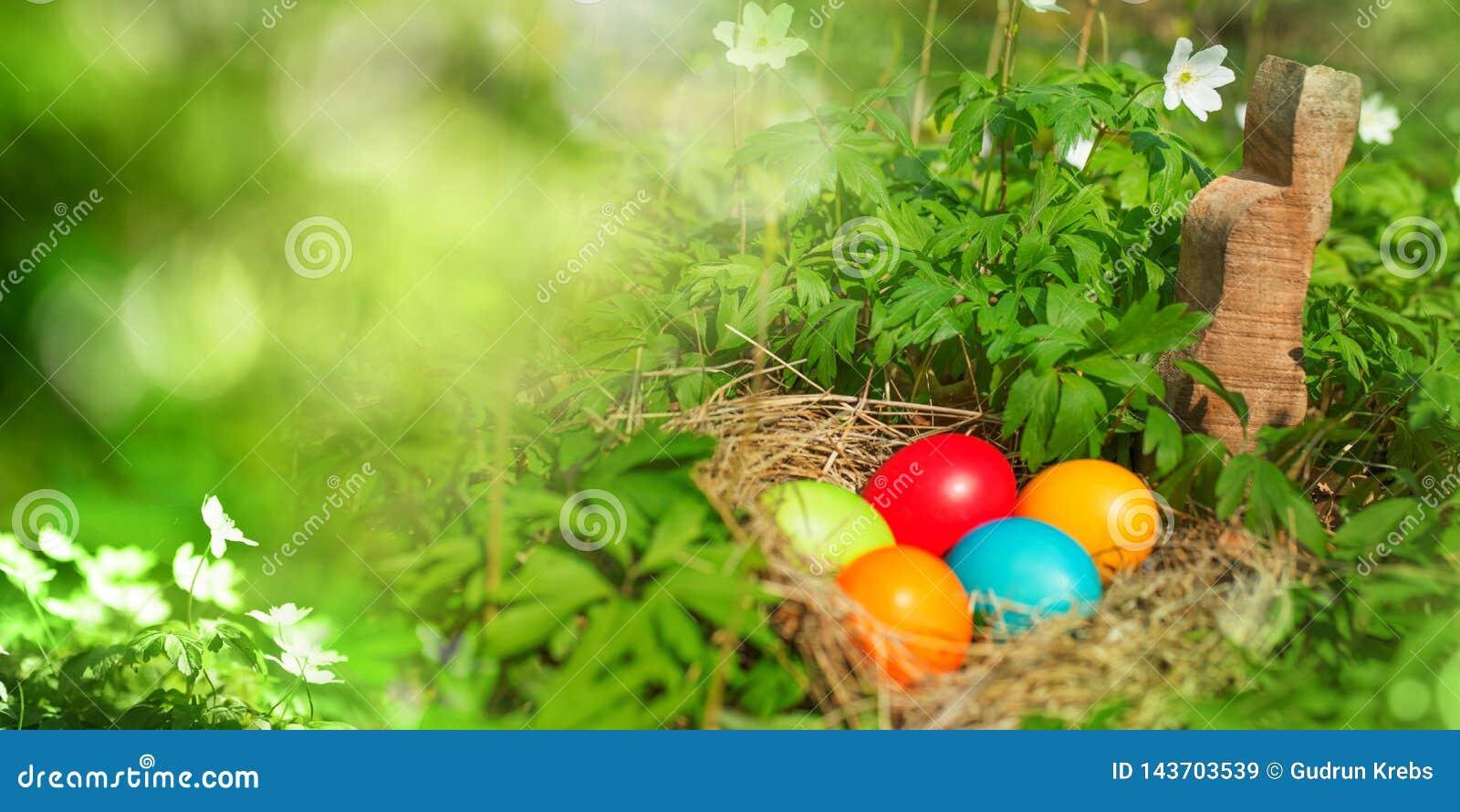 Ostereier in der grünen Natur