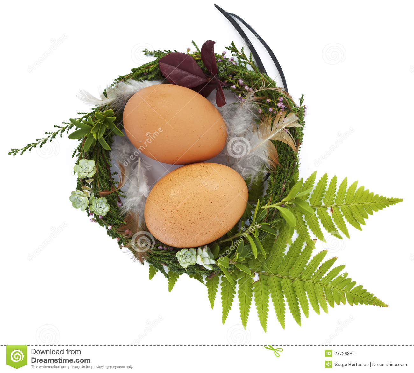 Ostern-Nest mit twio Eiern und Federn