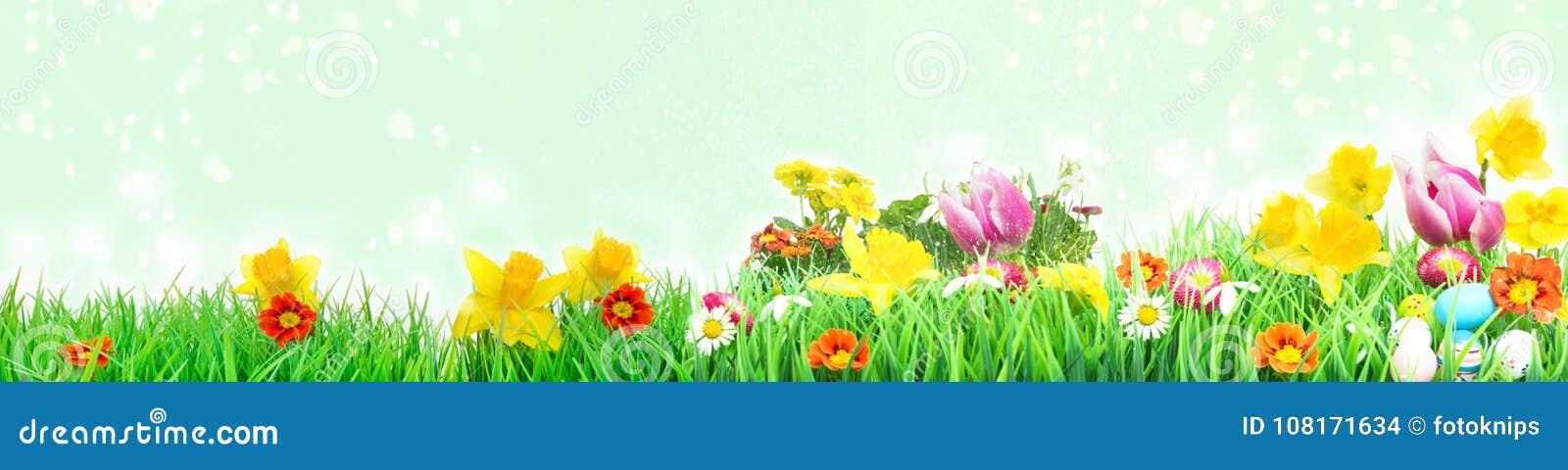 Ostern-Wiese, Blumenwiese mit Tulpen, Narzissen