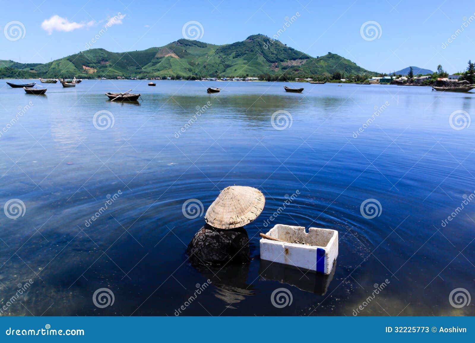 Download Ostras De Uma Colheita Da Mulher Adulta Na Lagoa De Lap An Imagem de Stock - Imagem de etnicidade, outdoors: 32225773