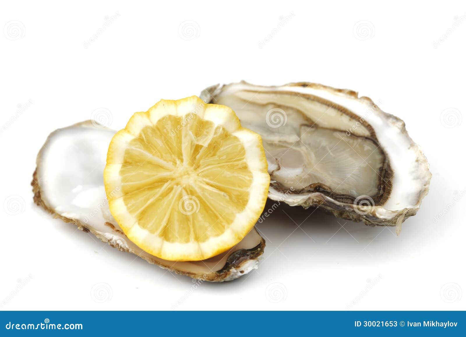 Ostron och citron på vit