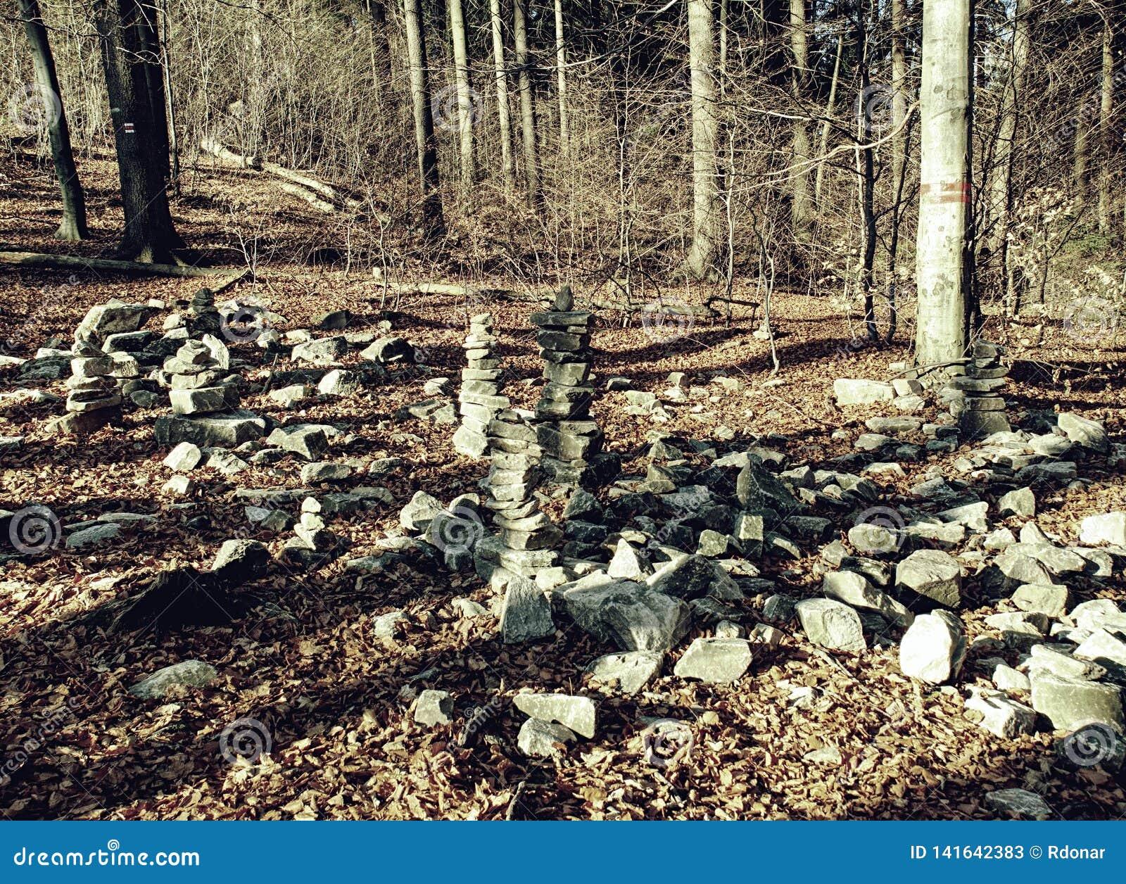 Ostrze kamienie brogujący w spadku lesie Jesień ranek
