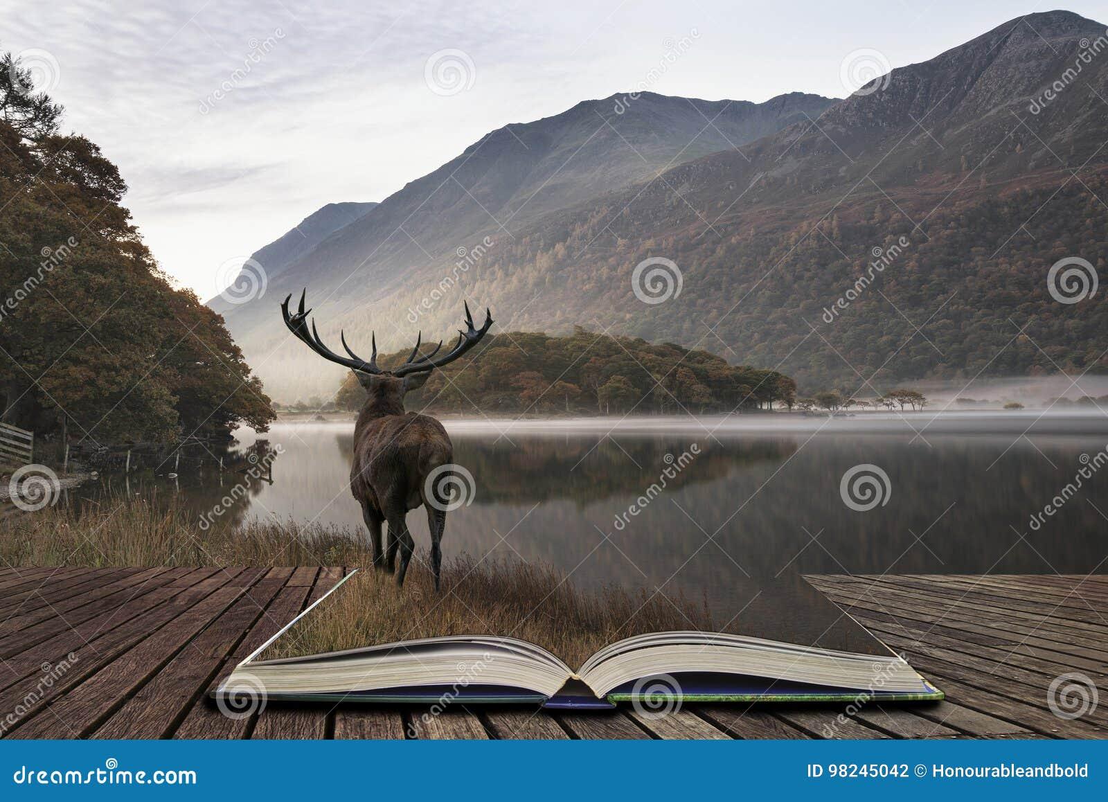 Oszałamiająco potężny czerwonego rogacza jeleń patrzeje out przez jezioro w kierunku mo