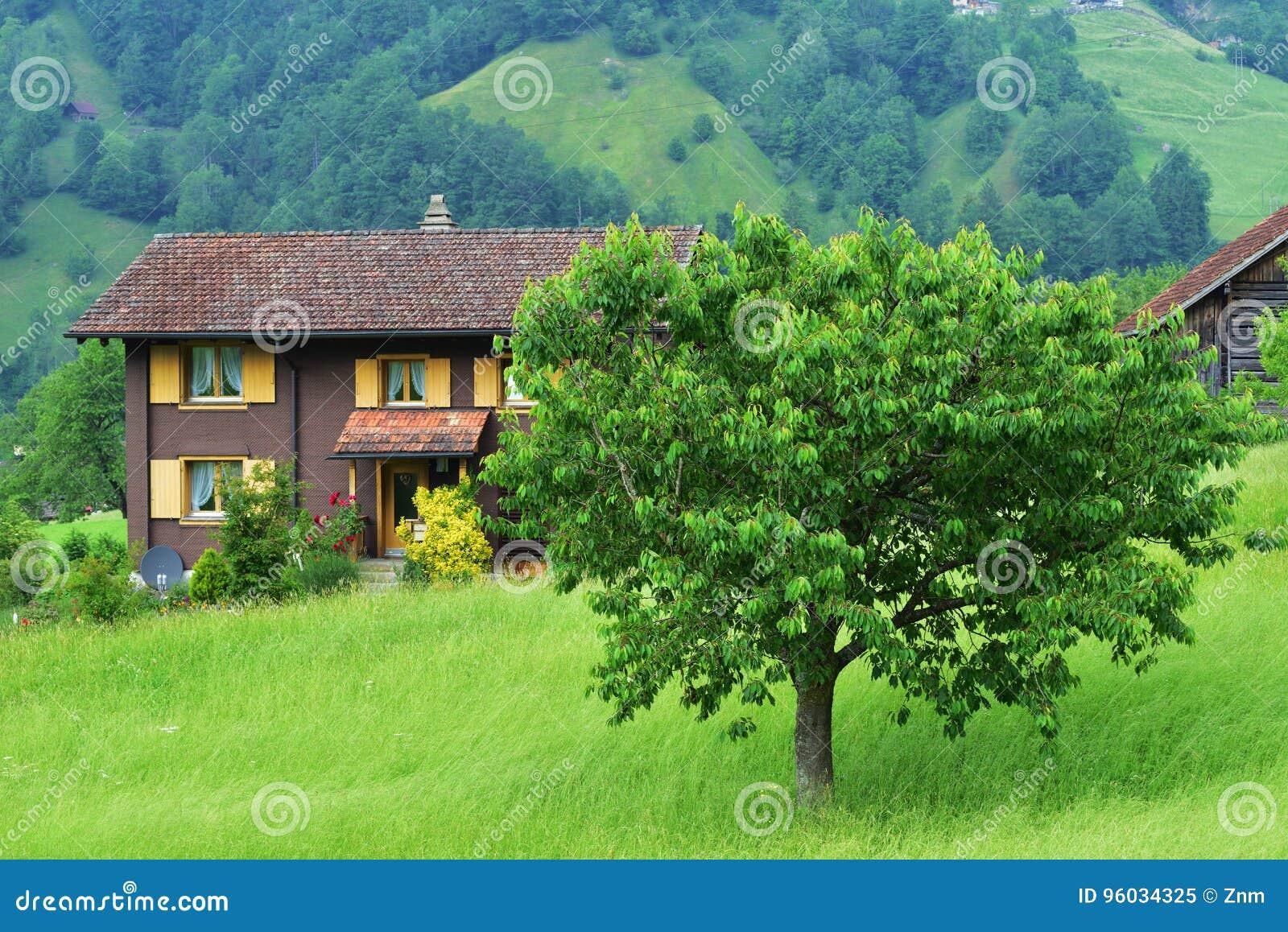 Oszałamiająco wysokogórski krajobraz w kantonie Uri, Szwajcaria