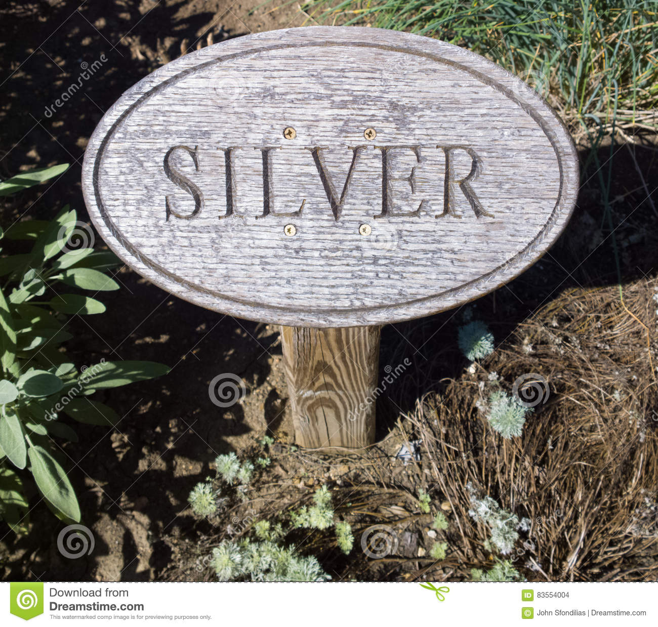 The Other Silver