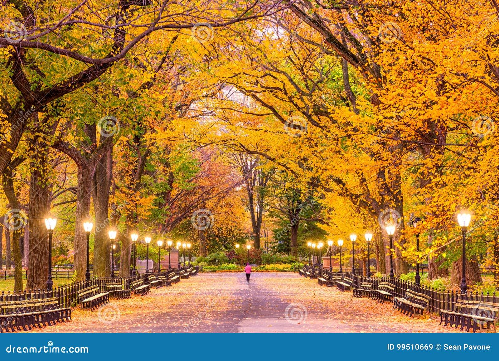 Otoño de Central Park