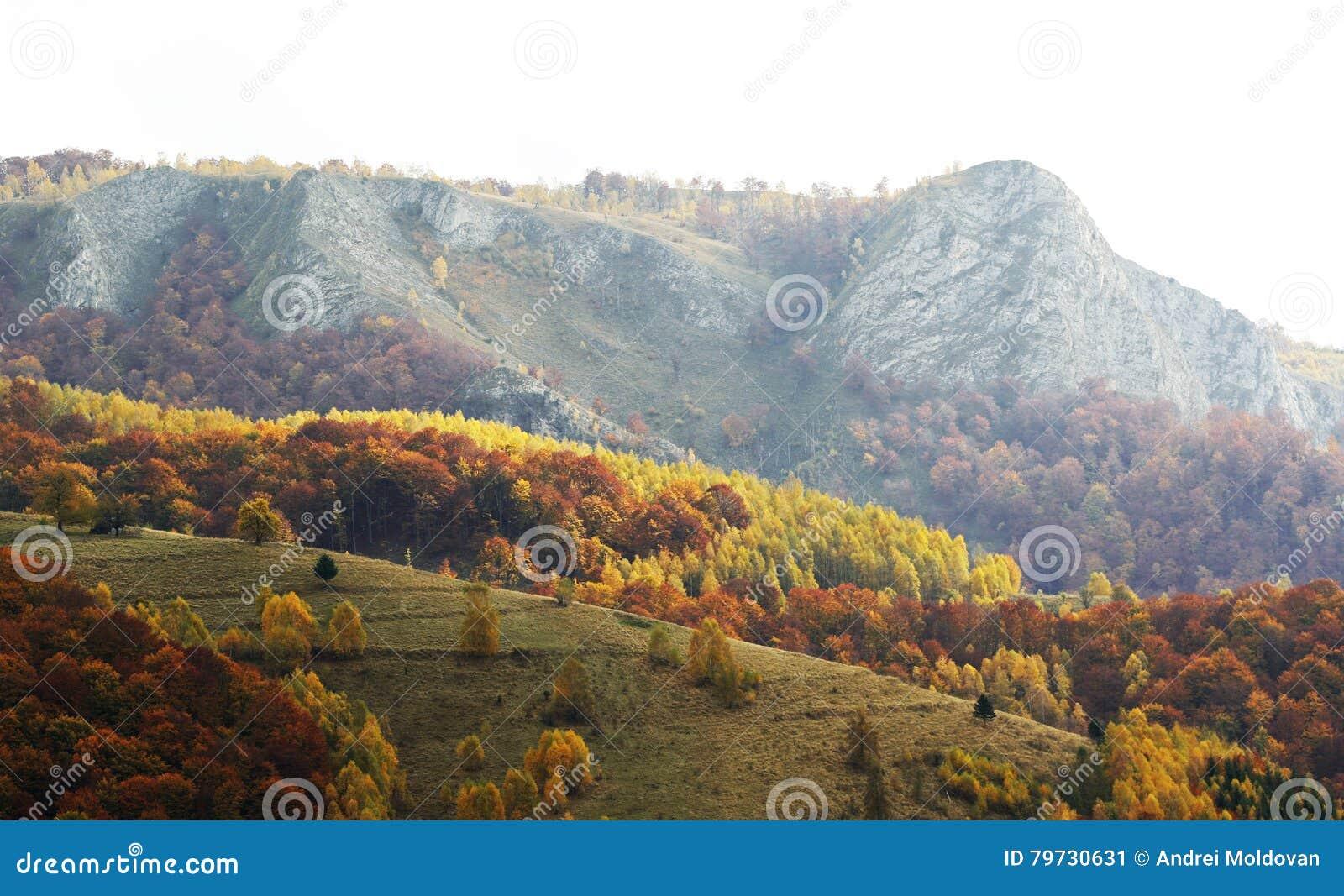 Otoño dramático en montañas rumanas