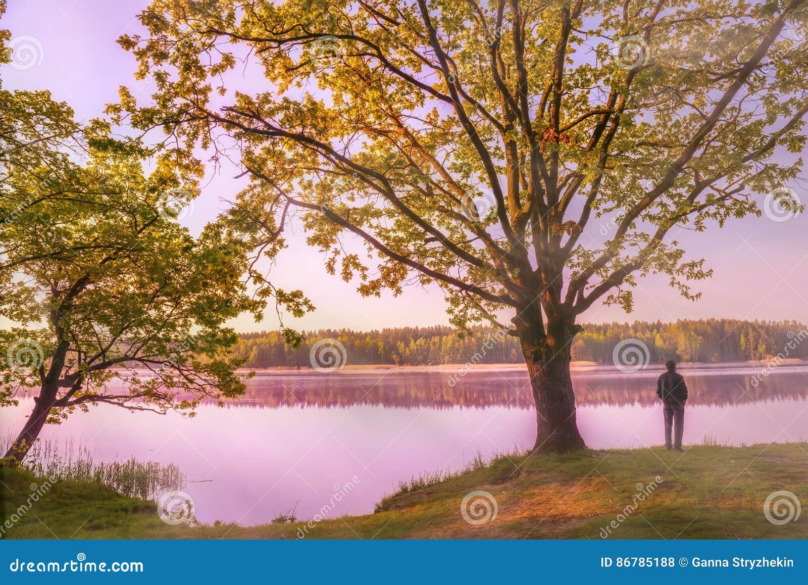Otta på en härlig sjö i träna