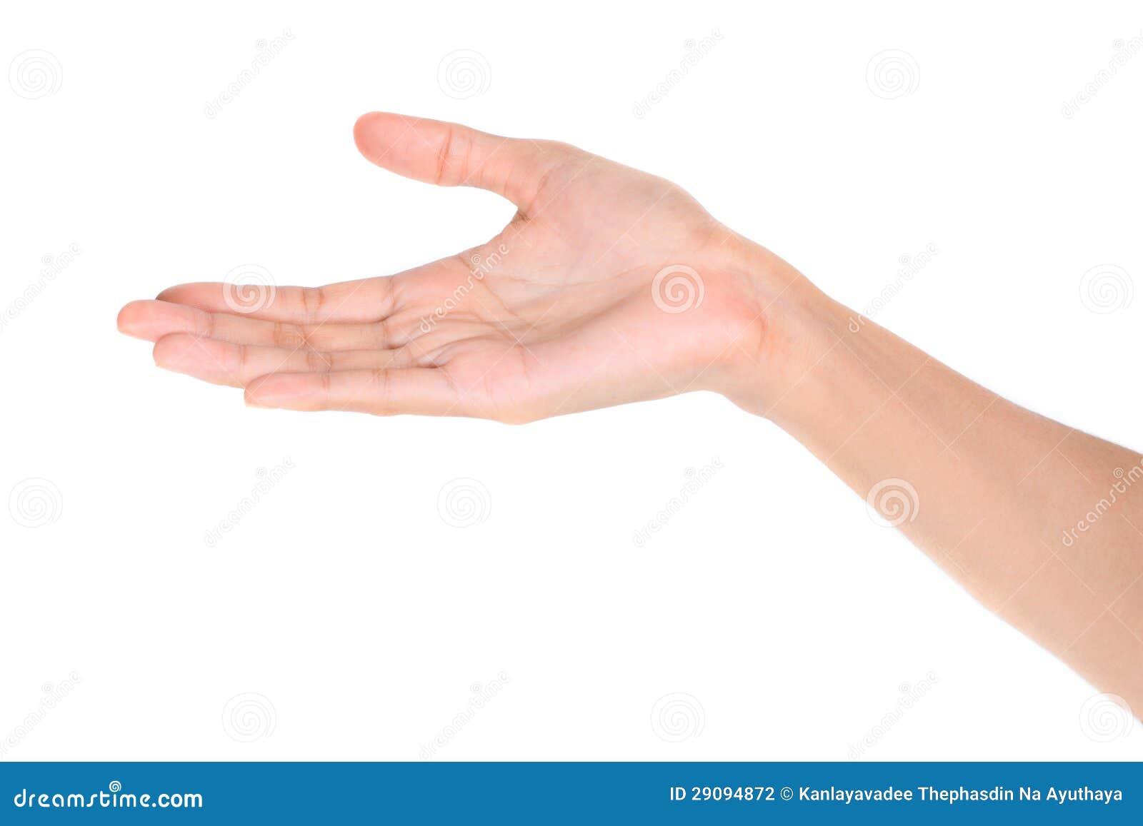 Otwarta palmowa ręka