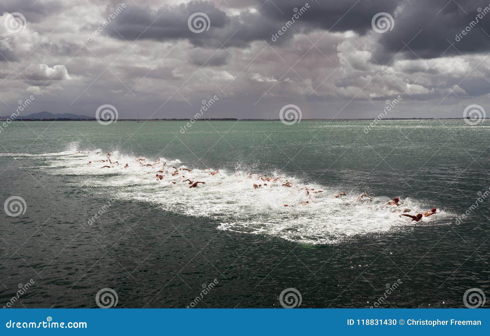 Otwartej wody pływaccy konkurenci zaczynają długodystansowej rasy