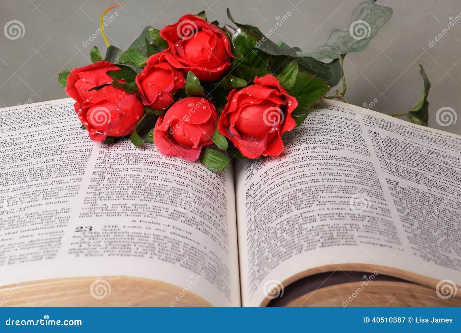 Otwiera biblię z czerwonymi różami