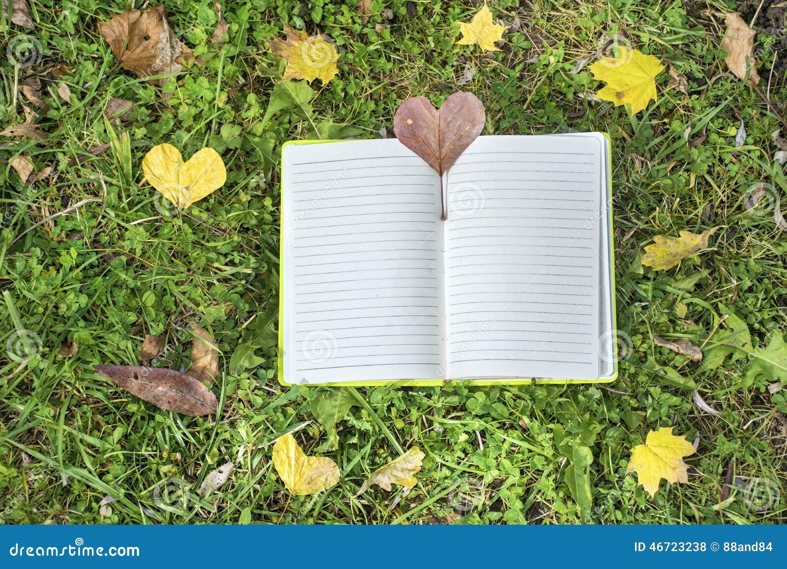 Otwiera książkę na zielonej trawy tle z jesień liśćmi